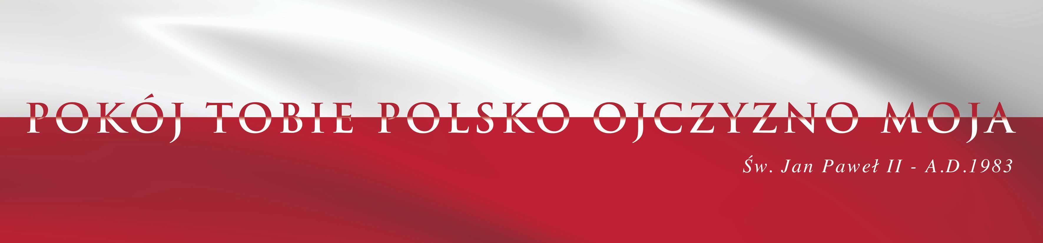 100-lecie odzyskania niedpoleglosci - baner patriotyczny